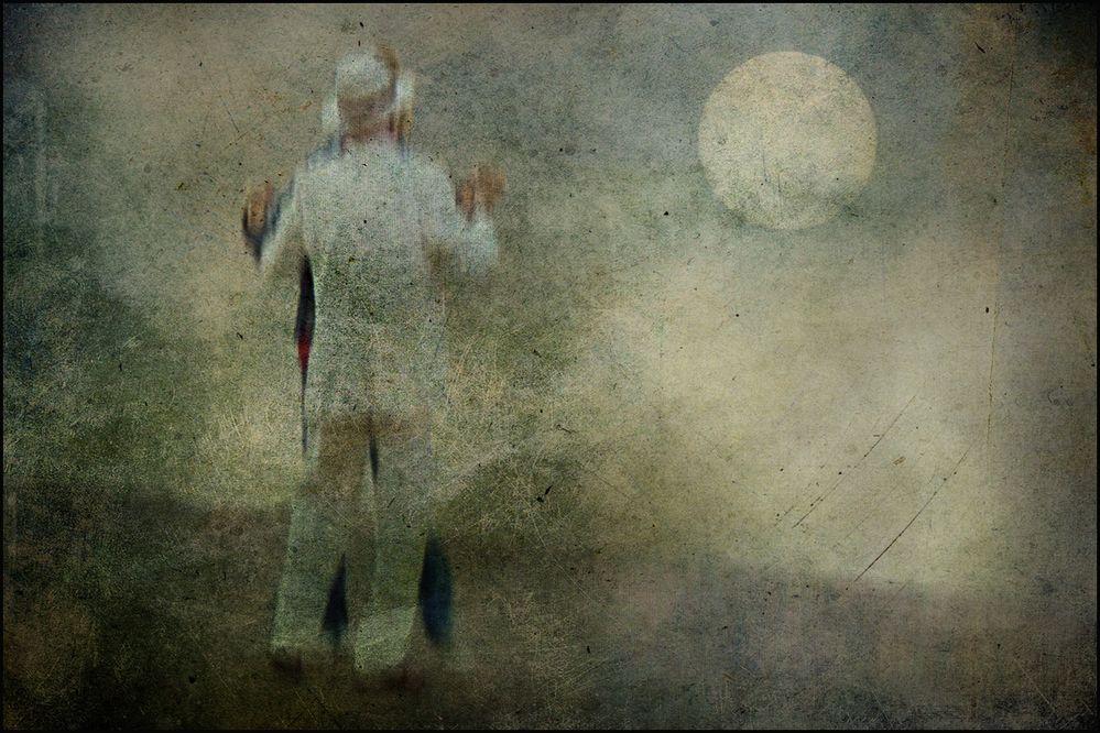 dance in the moonlight..