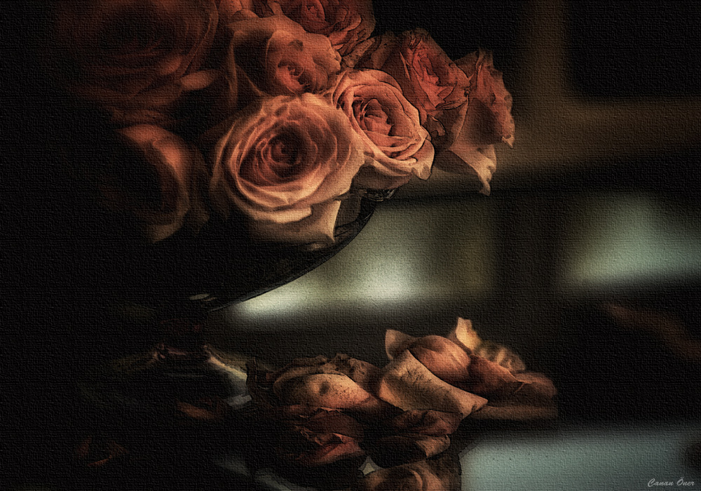 ssf4 rose ending relationship