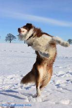 Dancing in the sun