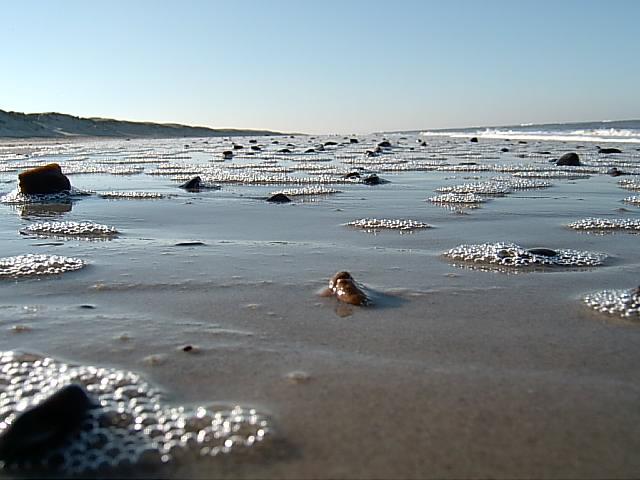 ...danish north coast