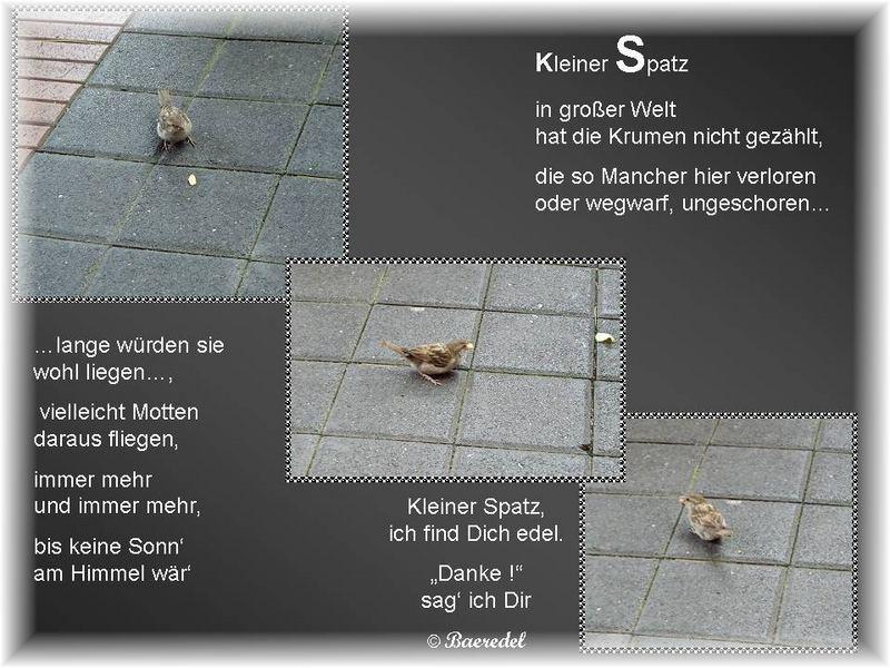 """""""Danke"""" kleiner Spatz! by Baeredel"""