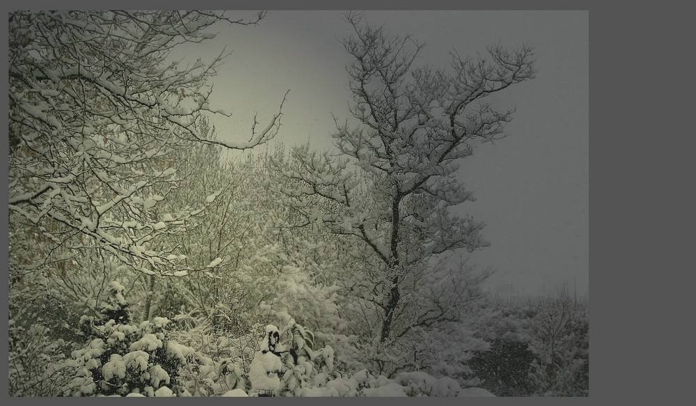 Dann doch noch Schnee