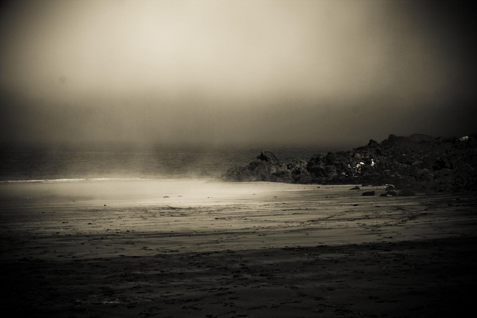 dans la brume...