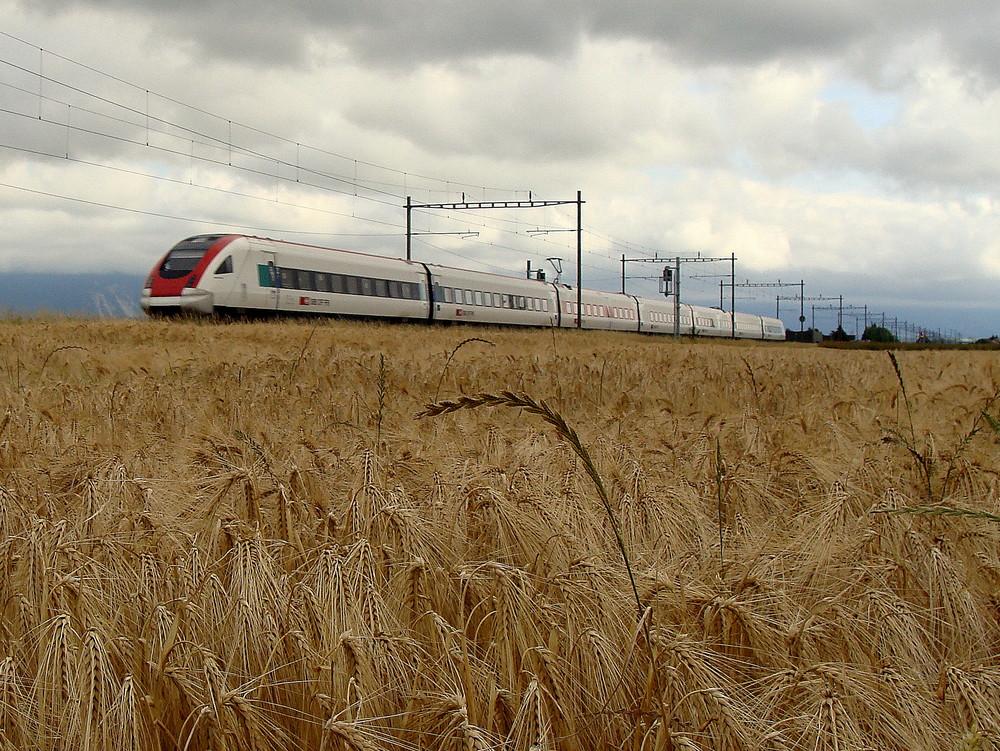 Dans la région agricoles de la Suisse..01