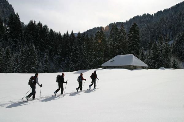 dans la région du lac de l'hongrin (suisse)