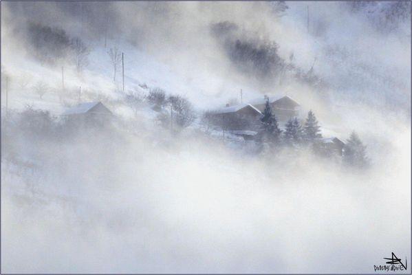 """Dans le brouillard"""