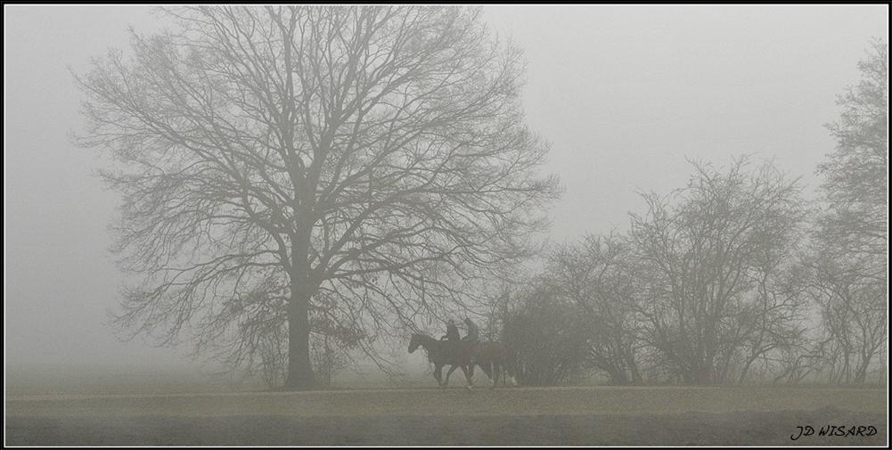 ....Dans le brouillard....