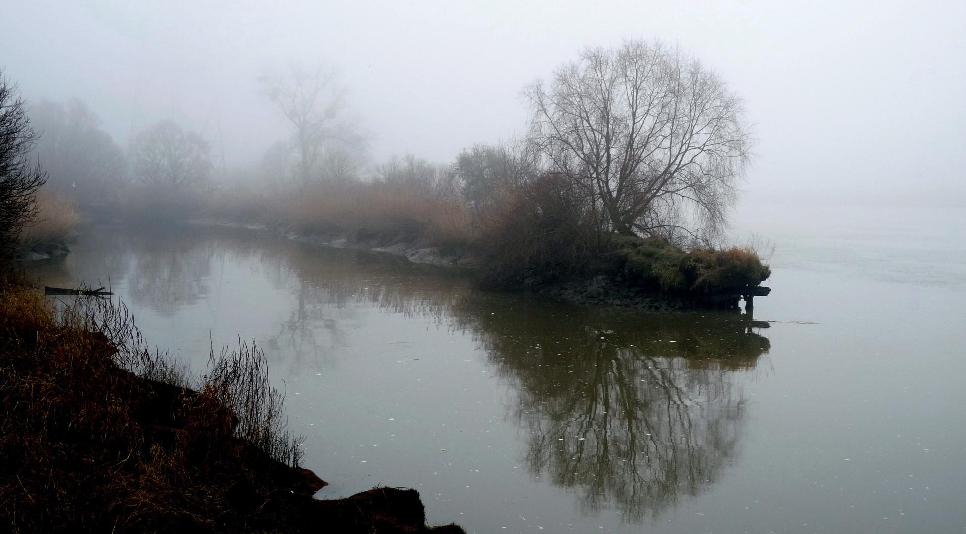 Dans le brouillard.