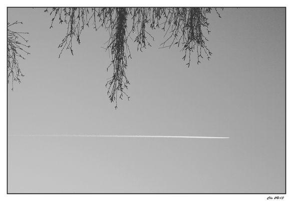 ...dans le ciel...