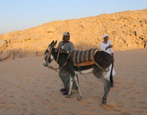 Dans le désert égyptien