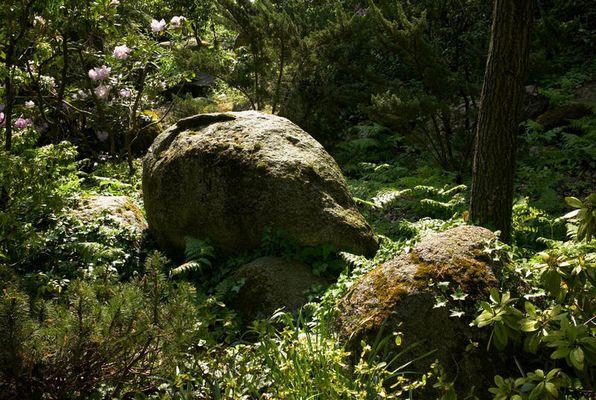 Dans le jardin japonais de Francfort