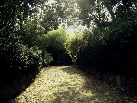 Dans le Park Güell