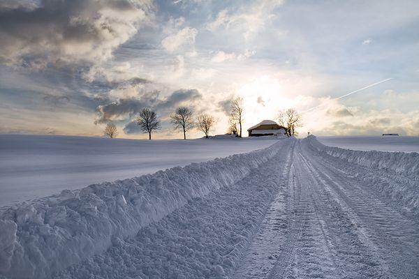 Dans le silence de l'hiver...