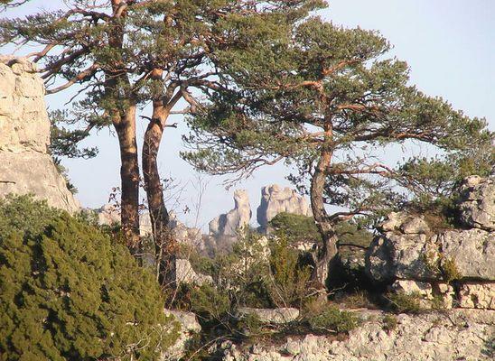Dans les chaos de Montpellier le Vieux