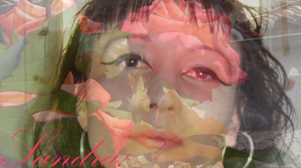 Dans les Roses...