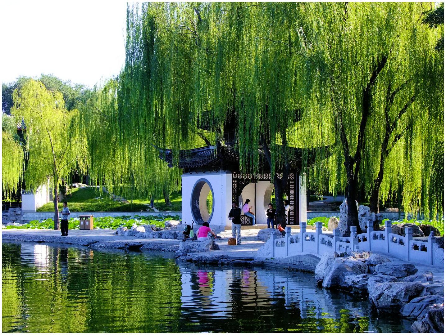 Dans un jardin chinois. 1