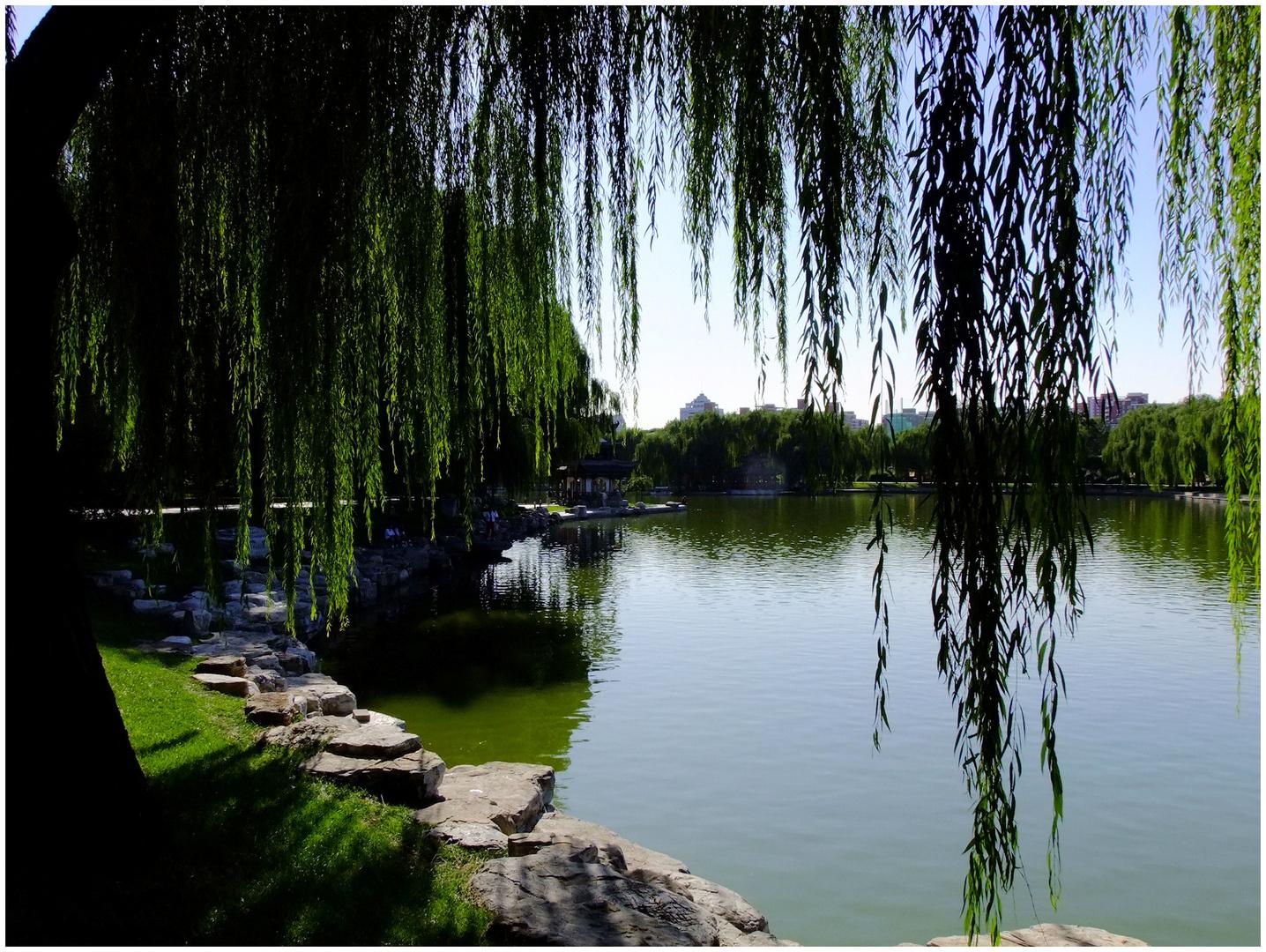 Dans un jardin chinois. 2