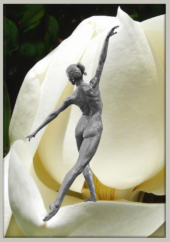 Dans un monde de fleurs 2