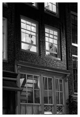 Dans une rue d'Amsterdam