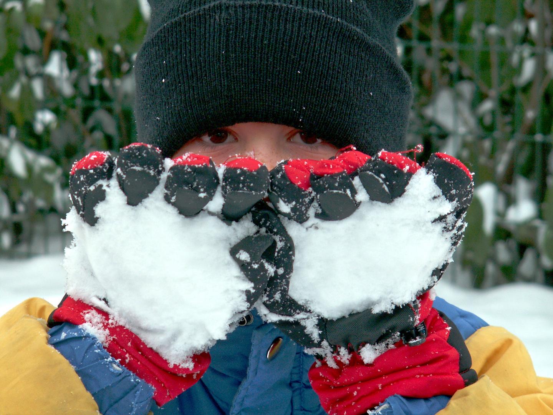 Danyel im Schnee 2010
