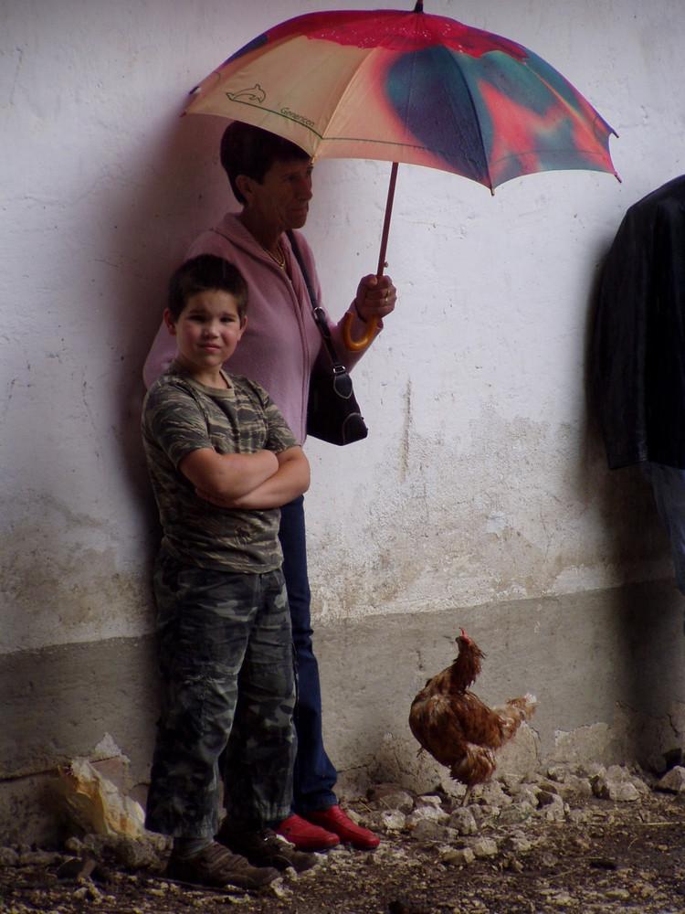 Darf ich untern Schirm?