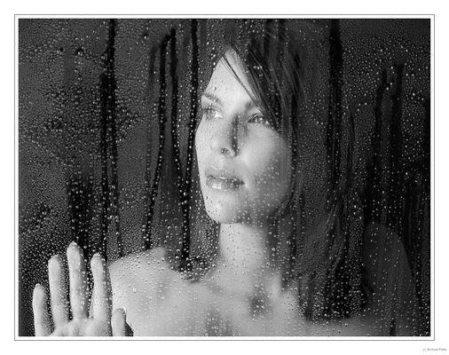 DARIA am Fenster