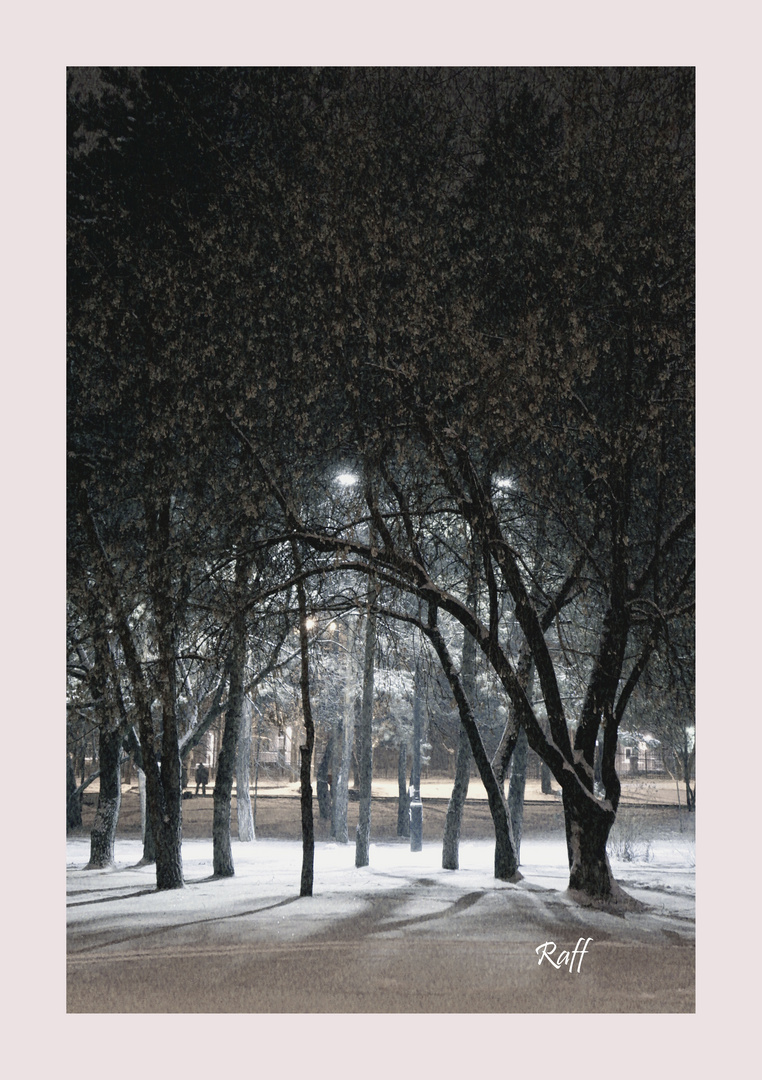 dark snowy
