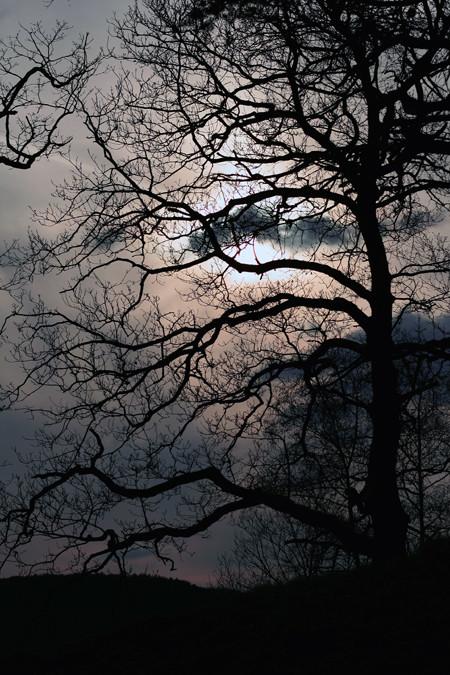 Dark sunset...