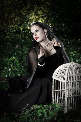 Dark Virgin