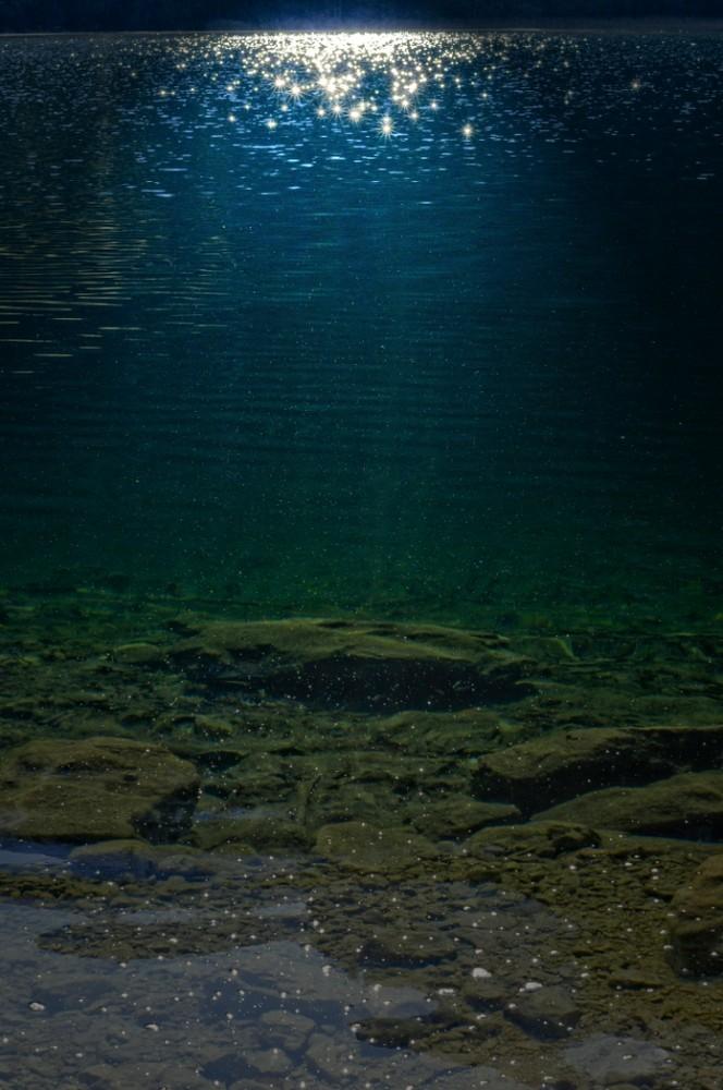 darkgreen imagination