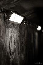 dark_light