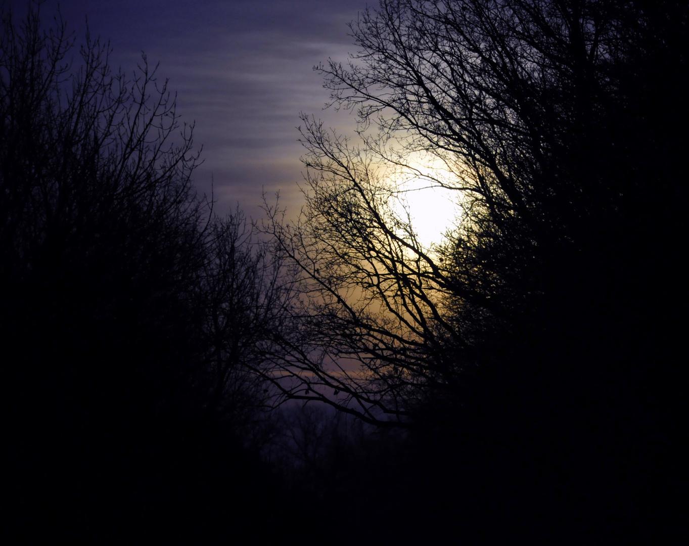 .Darkmoon.