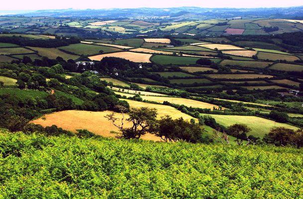 Dartmoor, Devon & ACDSee