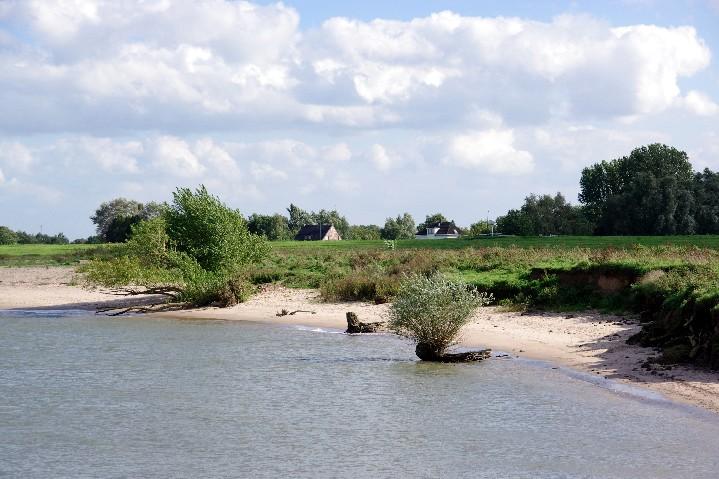 darum ist es am Rhein so schön ...