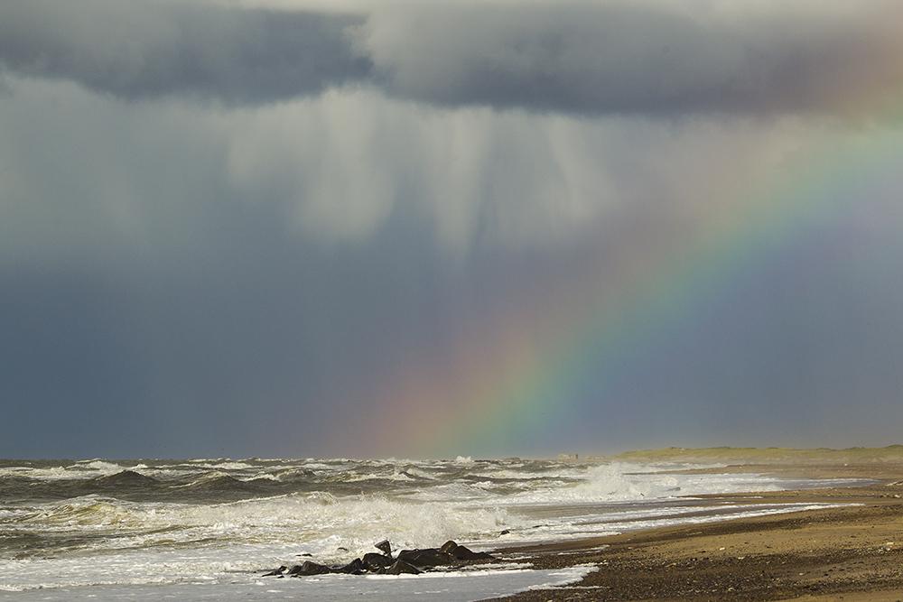 Darum liebe ich die Nordsee