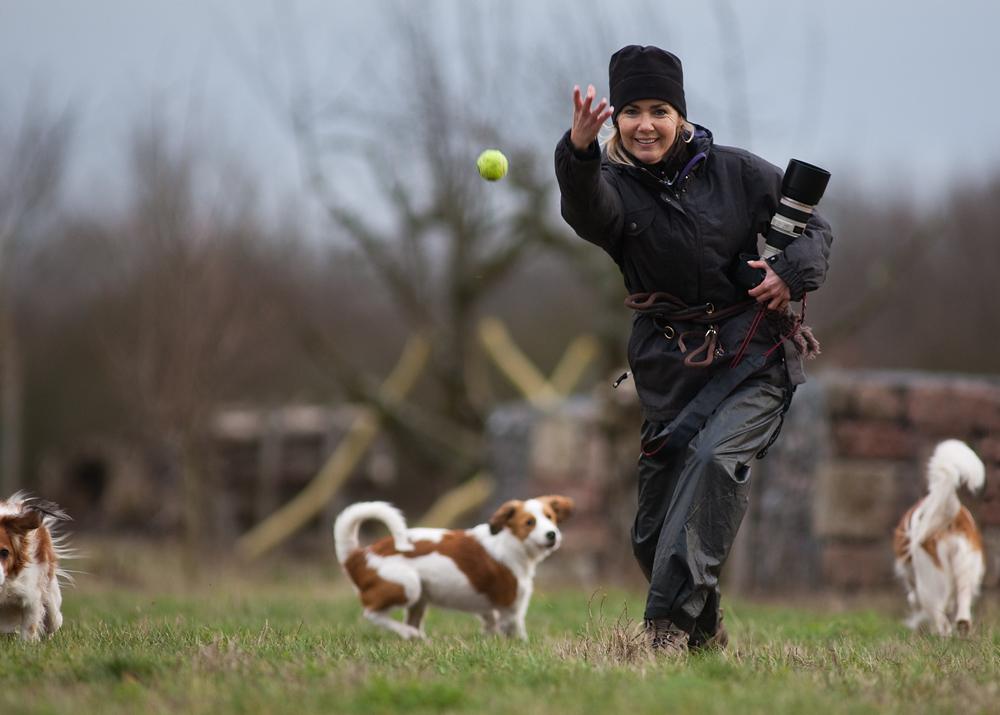 Das A und O erfolgreicher Hundefotografie