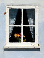 Das alte Fenster...