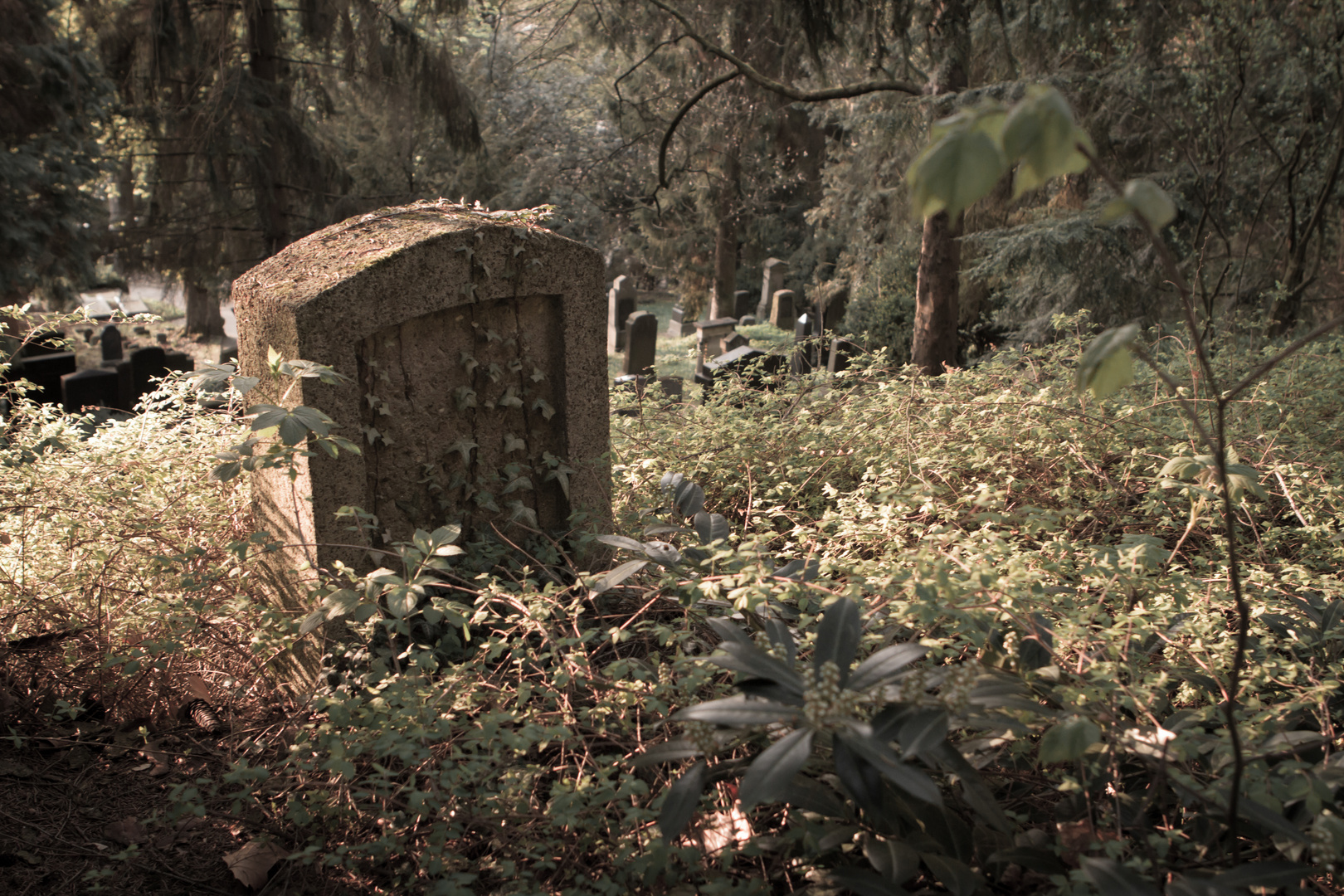 Das Alte Grab ohne Namen
