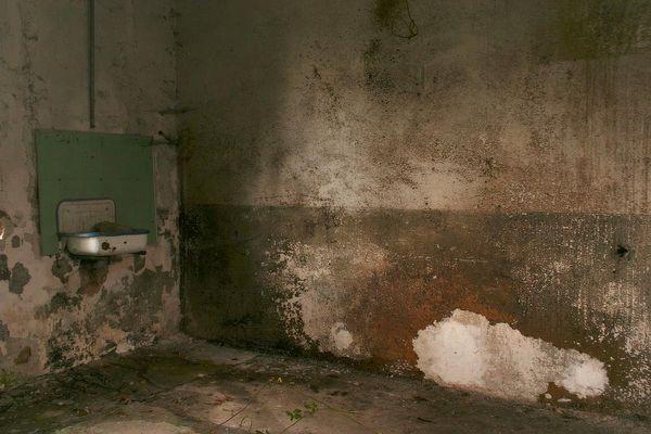 das alte grüne Waschbecken