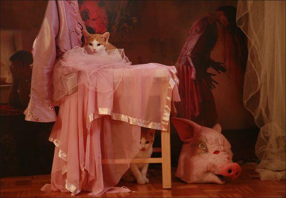 """Das alternative fotografische Solo 11 (""""........"""" von Anke M.)"""