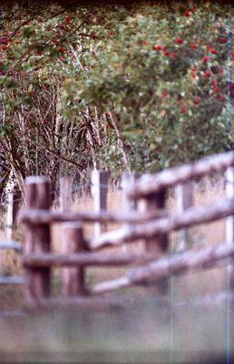 """Das alternative fotografische Solo 14 (""""GESTRYPPKRAPHT"""" von GESTRYPPKRAPHT)"""