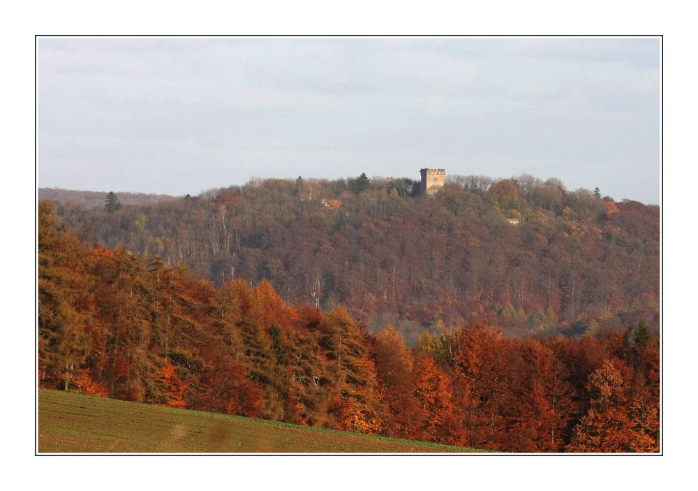 Das Ambergau im Herbst
