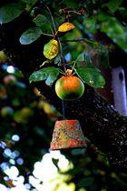 Das Apfelkind