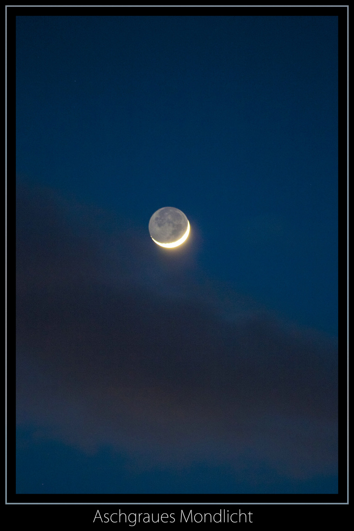 Das Aschgraue Mondlicht