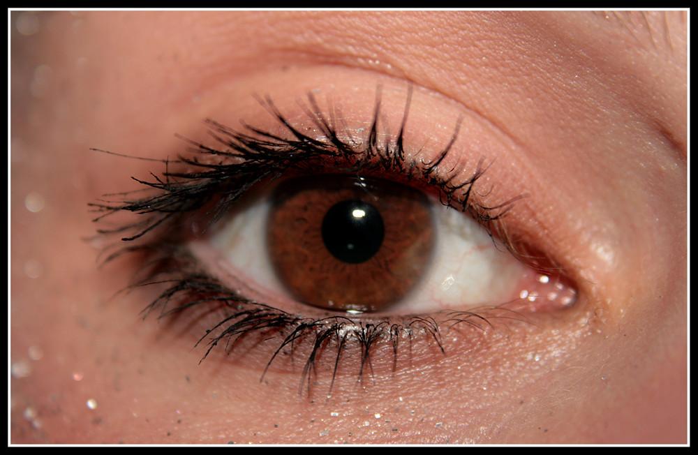 Das Auge 2
