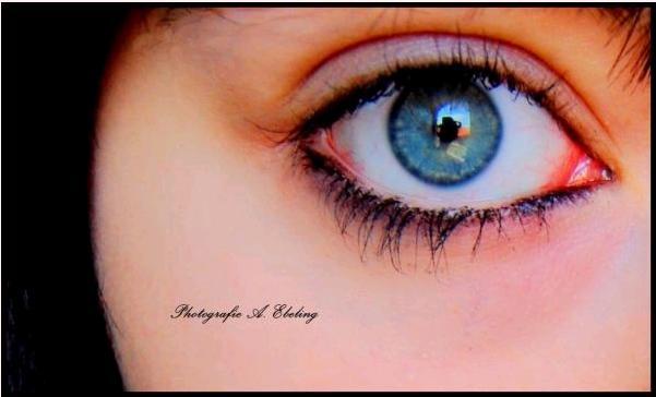Das Auge...