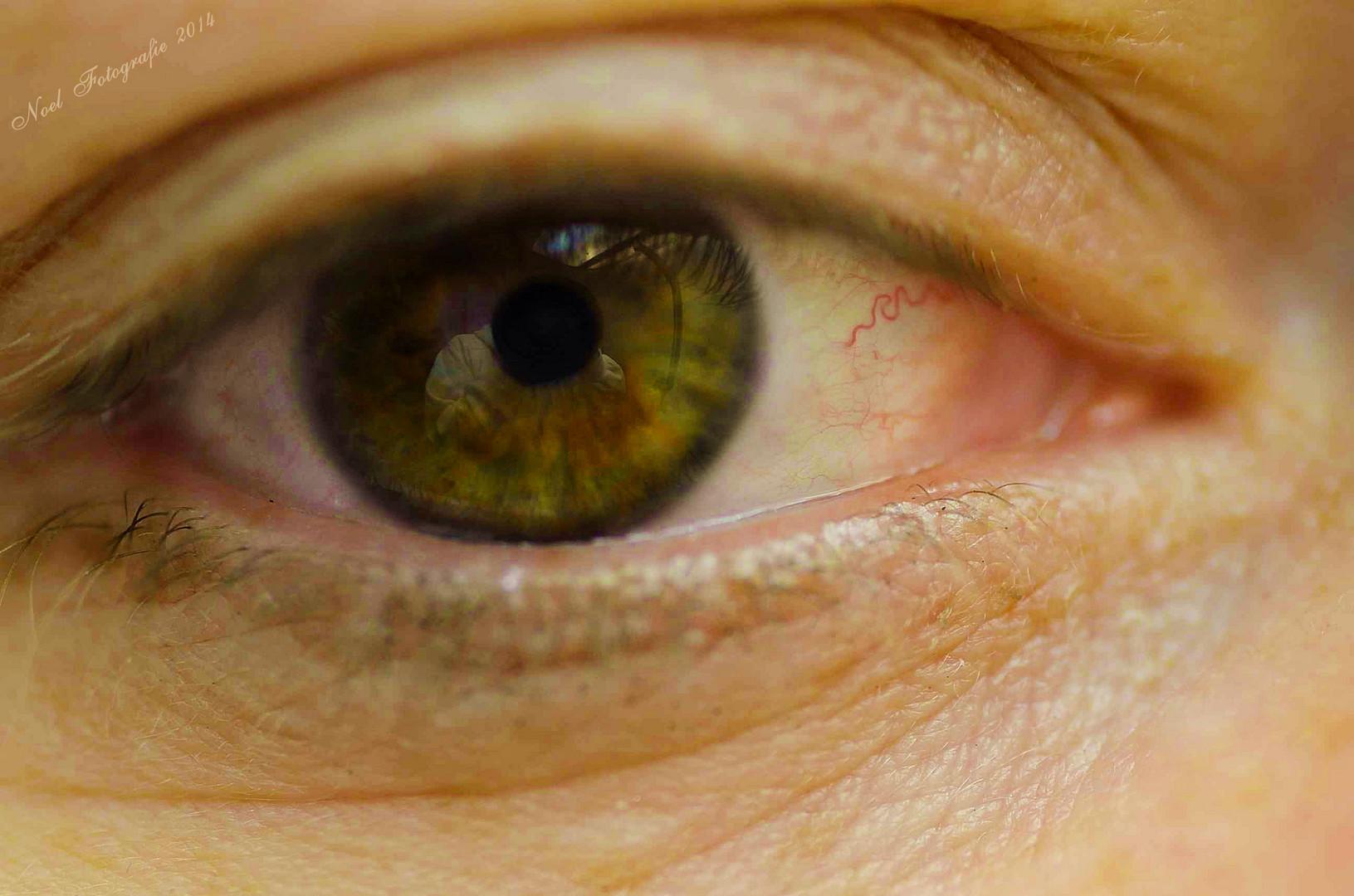 Das Auge der Wahrheit...
