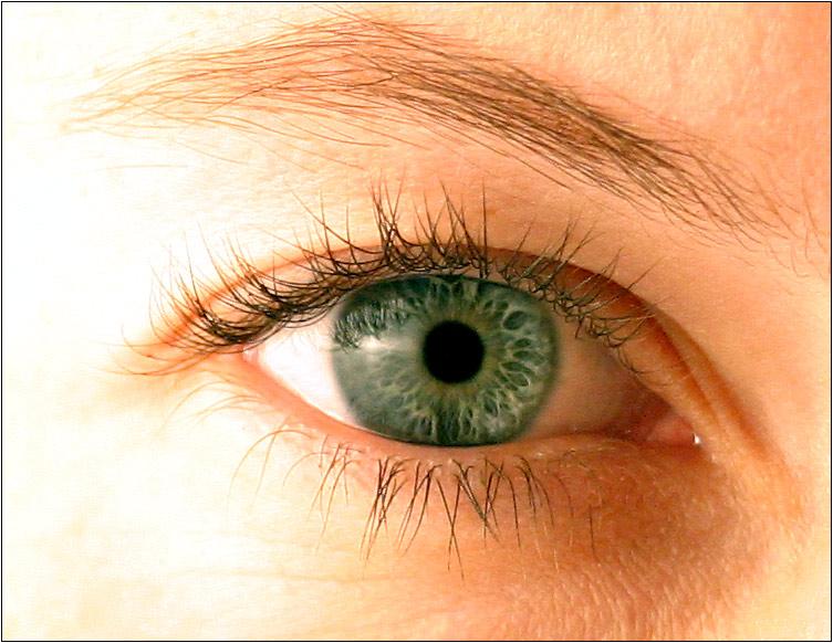 Das Auge des Betrachters