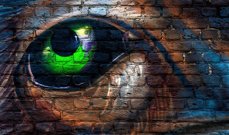 Das Auge ...