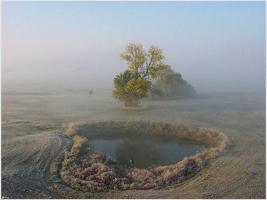 """das """"Auge"""" im Nebel"""